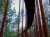 [벨기에] 플랜더스...울창한 숲속에서 나무 위를 자전거로 신나게 달려요