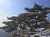 [대한민국 화첩산행 100] ㉔백암산(741m)...시선 강탈하는 백암의 비경, 내장산과 쌍벽