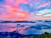 '제4회 아름다운 해상교량 사진 공모전...대상 '팔영대교의 일출' 차지
