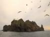 [울릉도] 신비의 섬 울릉도 명소 베스트 10...②독도, 512년부터 영원한 대한민국 영토