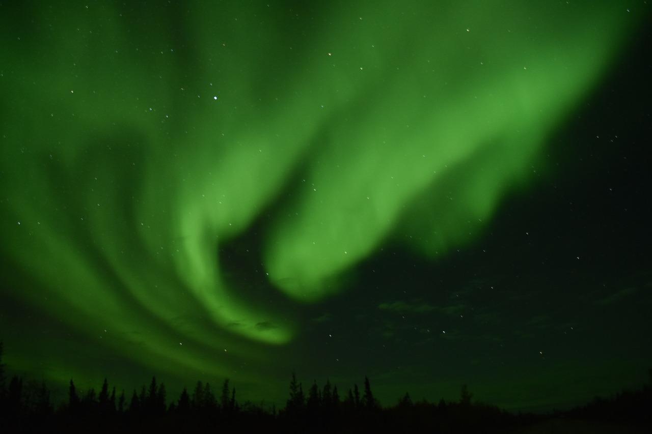 auror111.jpg