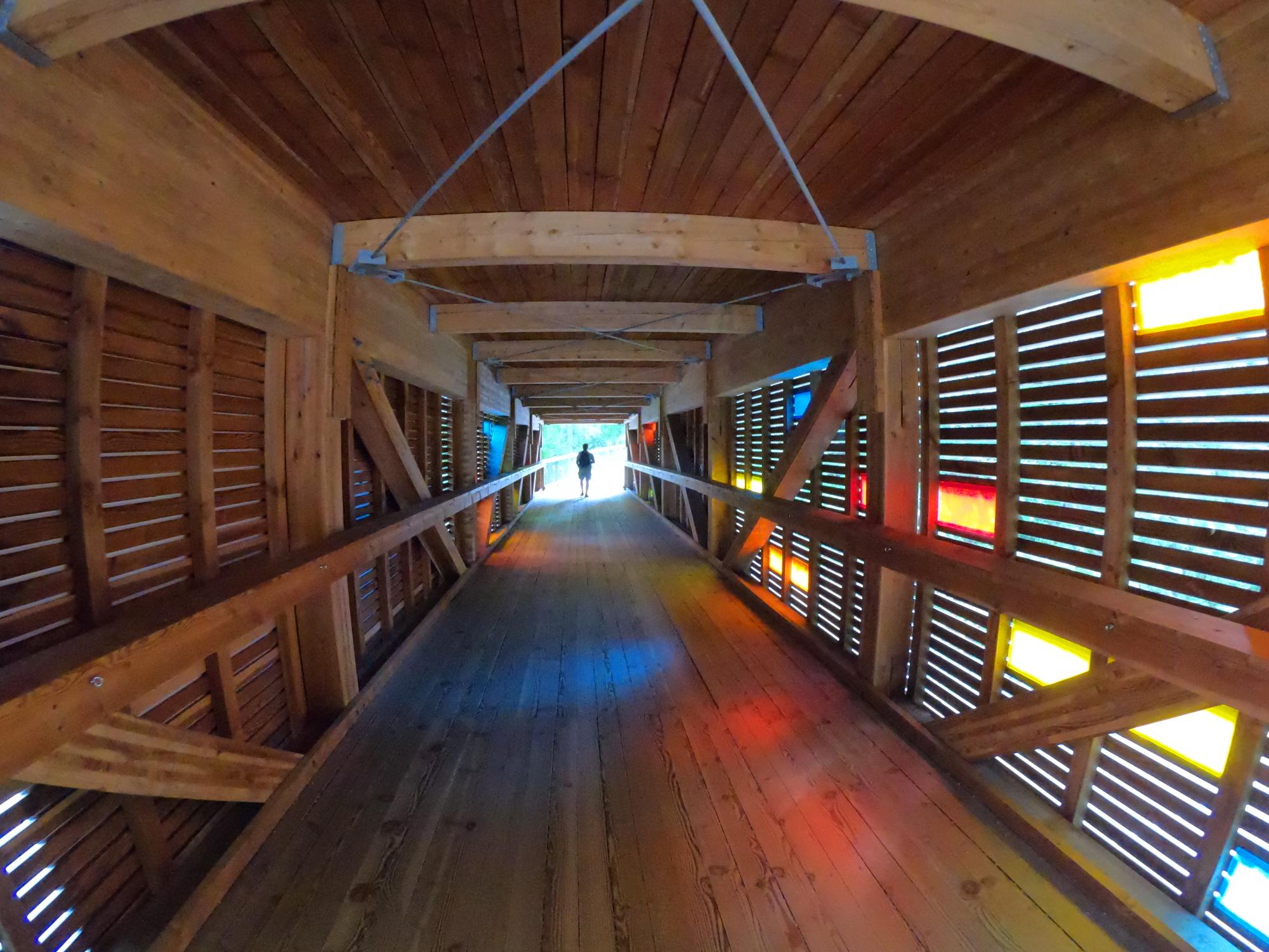 빛의 터널.jpg