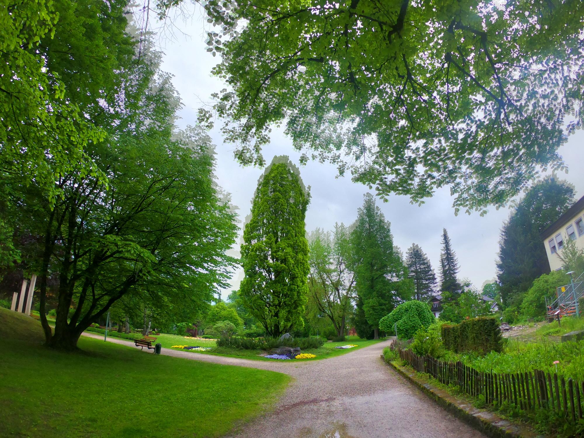 공원9.jpg