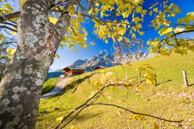 가을 풍경.jpg