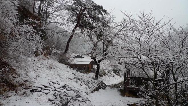 덕산터 겨울.jpg
